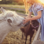 Young girl petting a horse