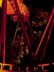 Nocturnes estivales au Bellewaerde Park