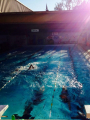 Club de natation La Semeuse
