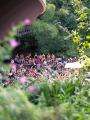 Jardin d'été - Les Siestes Électroniques © Raphaël Pincas   RP VISUALS