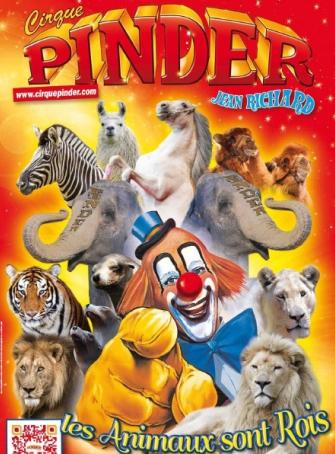 Pinder 2013
