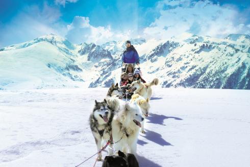 Partez en famille au ski en Ariège Pyrénées - Chien de traîneau
