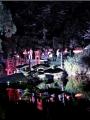 Jardin de nuit Maulévrier