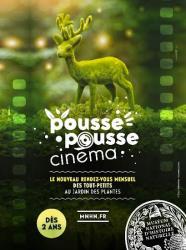 Pousse Pousse Cinéma