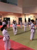 Montpellier Méditerranée Métropole Taekwondo