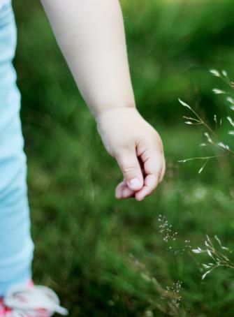 Dimanche en herbe
