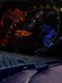 Planétarium Galilée - Odysseum