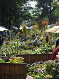 Salon du Jardin & Fête des Plantes à Strasbourg