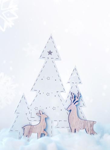 Le Noël des Animaux au Muséum