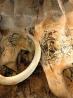 Expo Derrière la paroi : la grotte Chauvet révélée par la 3D