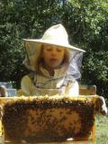 Goûter au rucher