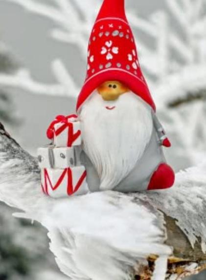 La fugue du Père Noël - Cie Les Tréteaux