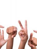 Stage de langue des signes