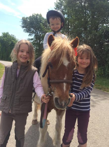 Stage équitation Alezane 2-6 ans