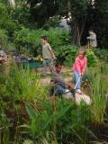 jardin découverte