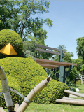 Claude Ponti au Jardin des Plantes
