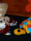 Lapidoux découvre son monde : spectacle de marionnettes pour enfants