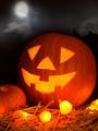 Halloween, une fête follement effrayante !