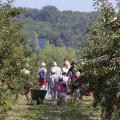 Paroles de Jardiniers - Ferme de Gally Saint-Cyr-L'école