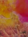 Holi, fête des couleurs au Jardin d'acclimatation