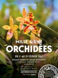 Mille et une orchidées au Jardin des plantes