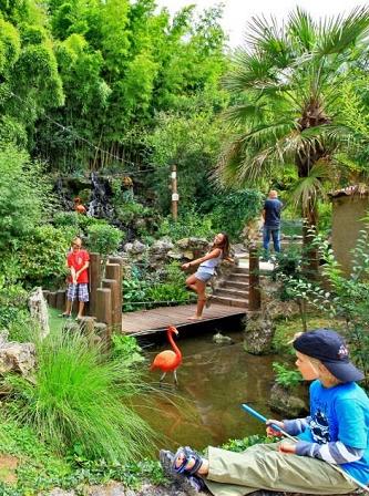 Aquarium pres de bordeaux 28 images quelques photos de for Bac a poisson jardiland