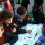 Festival des oiseaux de Levallois