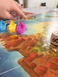 Animations Terre d'Oiseaux - Jeux de société