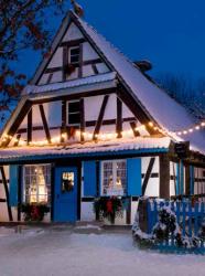 Noël à l'Ecomusée : jardins d'hiver et expos