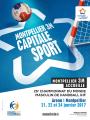 Mondial handball Montpellier 2017