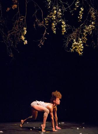 La dernière saison - Cirque Plume