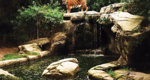 Zoo La Boissière du Doré