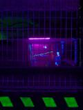 Laser Quest - Bordeaux