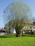 Moulin d'Eschviller