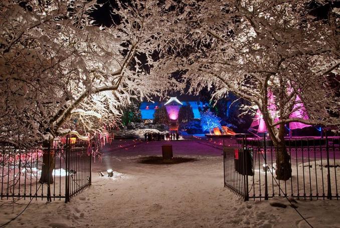 Noël au Jardin au Parc de Wesserling