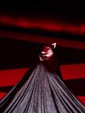 Quand on parle du loup... - Nino d'Introna, création au TNG