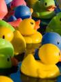 Fête foraine : la pêche aux canards