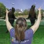 Week-end métiers du zoo au Safari de Peaugres