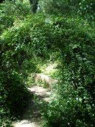 Jardin écologique de Lille