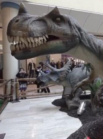 Unexpected Dinos
