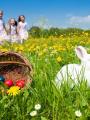 Chasse aux oeufs de Pâques 2014 à Toulouse