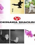 Okinawa Shaolin