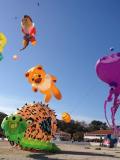 Festival de cerfs-volants de martigues
