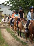 Centre ferme equestre Rennes