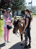 ©Brunchs kids-friendly à l'hippodrome