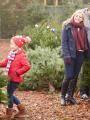 Acheter son sapin de Noël en famille