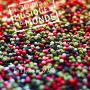 Les Jeudis des musiques du Monde 2015