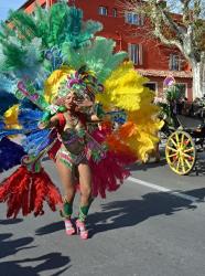Carnaval Mouans Sartux