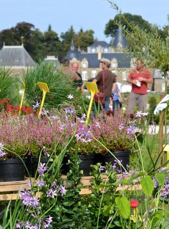 Festival Plantes et Saveurs au Potager
