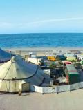 Biennale des Arts du Cirque de Marseille